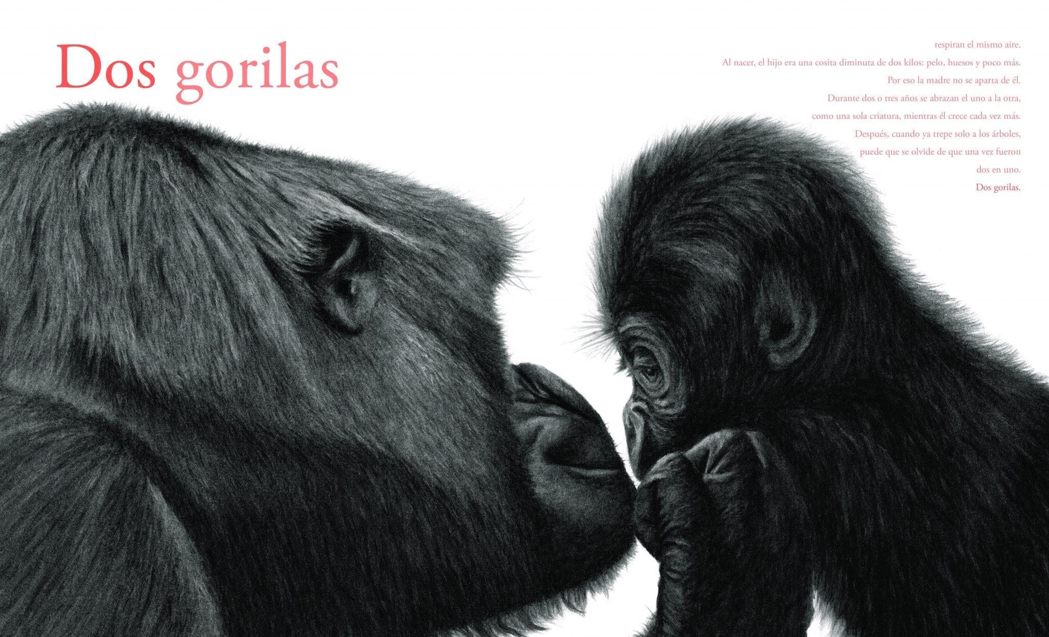 Estas evocadoras ilustraciones permiten a los lectores ver muy de cerca a las criaturas más indómitas de la naturaleza. Unos textos poéticos