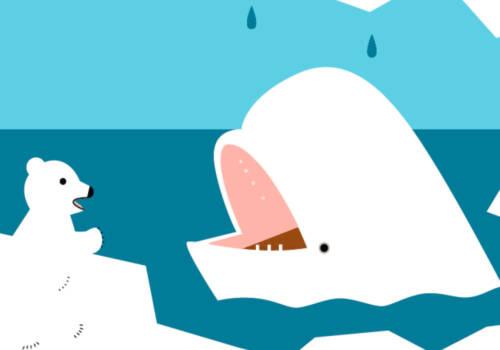 a las belugas